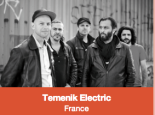 temenik electric